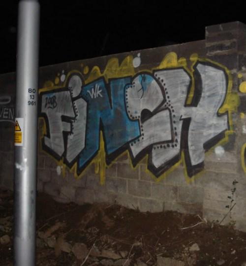finch1-1